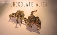 скульптурный шоколад Chocolate Alien